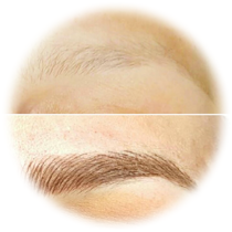 Eyebrow Microblading Certification from MD Esthetics - microblade-one-day